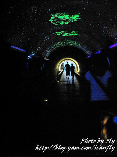 【就是愛玩】高雄三日遊–DAY2 旗津星空隧道 @我眼睛所看見的世界(Fly's Blog)
