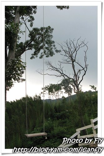 【遊記】綠光森林-富野綿羊牧場(下)《桃園復興鄉》 @我眼睛所看見的世界(Fly's Blog)